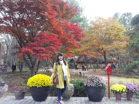Fall season in Nami Island